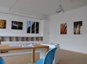 dcm Galerie